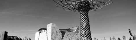 """SEGNALAZIONE: """"Una stima realistica dell'impatto economico dei visitatori dell'Expo 2015"""" (J. Massiani e G. Pizziali)"""
